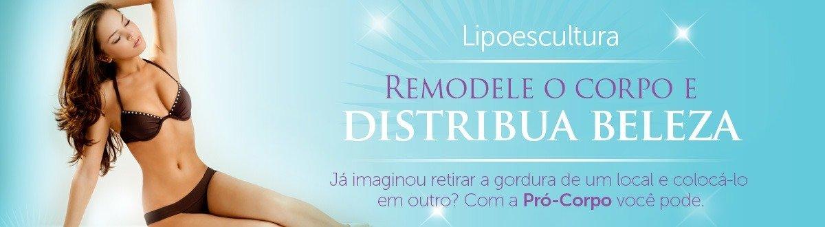 Lipoescultura: A cirurgia plástica capaz de modelar seu corpo